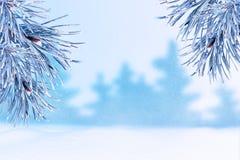 Winterlandschaft mit Schnee Weihnachtshintergrund mit Tannenzweig stockfoto