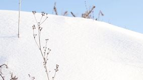 Winterlandschaft mit schneebedeckten Bäumen stock video footage