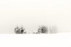 Winterlandschaft mit schneebedeckten Bäumen Stockbilder