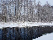 Winterlandschaft mit schneebedeckten Bäumen und ungefrorenem Fluss Lizenzfreie Stockfotografie