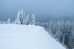 Winterlandschaft mit Schneewehen Lizenzfreies Stockbild