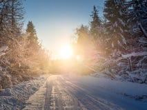 Winterlandschaft mit Sonnenstrahlen, Wald und Straße Lizenzfreies Stockbild