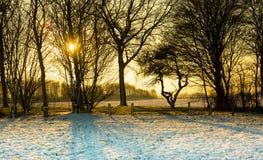 Winterlandschaft mit Sonnenuntergang Lizenzfreie Stockfotos