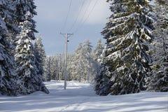 Winterlandschaft mit Stromleitung Stockfotografie