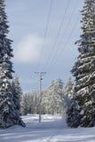 Winterlandschaft mit Stromleitung Lizenzfreie Stockfotografie