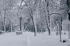 Winterlandschaft mit trees2 Stockbilder
