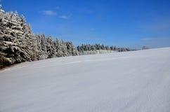 Winterlandschaft mit Wald Stockfoto