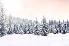 Winterlandschaft nahe Vogel-Skimitte Lizenzfreie Stockfotografie