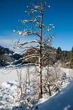 Winterlandschaft in Norwegen Lizenzfreie Stockfotos