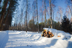 Winterlandschaft in Polen lizenzfreies stockfoto