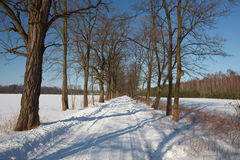 Winterlandschaft in Polen stockbilder