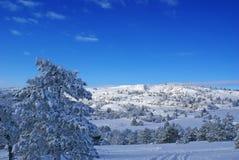 Winterlandschaft R Stockfoto