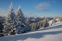 Winterlandschaft in Slowakei Stockbild