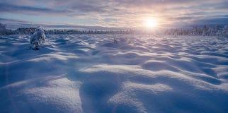 Winterlandschaft am Sonnenuntergang stockfotos