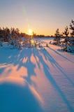 Winterlandschaft. Sonnenuntergang. Lizenzfreie Stockbilder