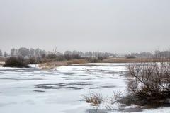 Winterlandschaft und -bäume lizenzfreie stockfotos