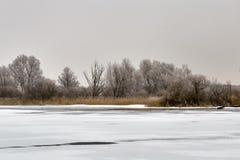 Winterlandschaft und -bäume stockfotografie