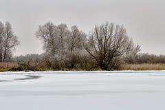 Winterlandschaft und -bäume lizenzfreies stockbild