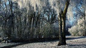 Winterlandschaft und fallender Schnee vektor abbildung
