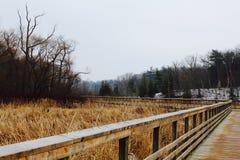 Winterlandschaft von einer Brücke Lizenzfreie Stockfotos