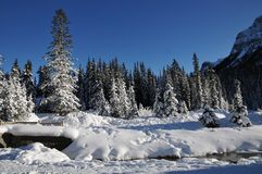 Winterlandschaft von Kanada in Nationalpark Banffs lizenzfreie stockfotos