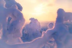 Winterlandschaft von Sotkamo, Finnland lizenzfreies stockfoto