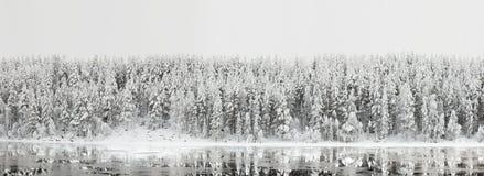 Winterlandschaft. Waldpanorama mit Reflexion im Fluss Stockfoto