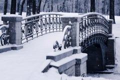 Winterlandschaften der Stadt von St- Petersburg und Leningrad-Region Stockbild