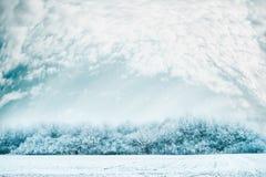 Winterlandschaftshintergrund mit Schnee bedeckte Bäume, Feld und schönen Himmel Stockfotos