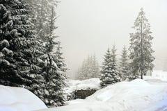 Winterlandschaftslandschaft mit flacher Grafschaft und Holz Lizenzfreies Stockfoto