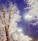 Winterlandschaftsnachtansicht der glänzenden Laterne unter den eisigen Bäumen des Winters und fallenden dem Winterschnee Stockfoto