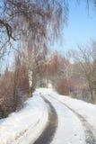 Winterlandstraße Lizenzfreies Stockbild
