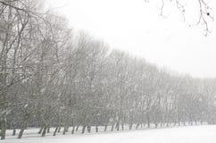 Winterliche Landschaft stockfotos
