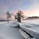 Winterliche Landschaft IV stockfoto