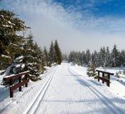 Winterliche Landschaft mit geänderter Cross Country-Skifahrenweise Stockbild