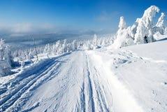 Winterliche Landschaftslandschaft Stockbilder