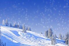 Winterliche Steigung mit Tannenbäumen, Weihnachtskartendesign Stockbilder