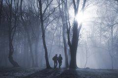 Winterlicher Morgen Stockbilder