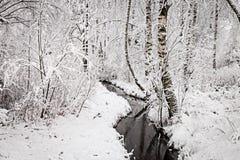 Winterlicher Nebenfluss im Wald Stockfotografie