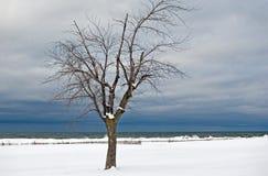 Winterlicher Strand Lizenzfreies Stockfoto