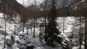 Winterluftbrummen establisher über schneebedecktem Flussnebenfluß und Waldholztal unter gefrorenen Bergen Schnee im Berg stock video footage