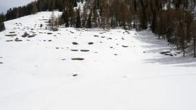 Winterluftbrummen establisher über schneebedecktem Waldholztal unter gefrorenen Bergen Schnee in der Gebirgsnatur draußen stock video footage