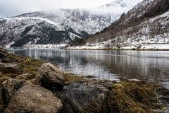 Winterly fjord royaltyfri foto