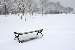 Winterly park Stock Photography