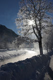 Winterly river. Winterly scene at a river on a cold winter morning royalty free stock image