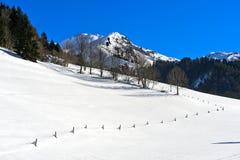 Winterly Vallée de la Manche, Morzine, Frankrike royaltyfri bild