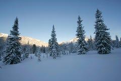 Wintermärchenland stockfoto