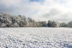 Wintermärchenland Stockbild