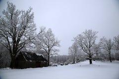 Wintermärchenlandlandschaft in Lettland Lizenzfreie Stockfotografie