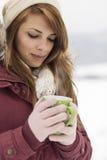 Wintermagie Stockbild